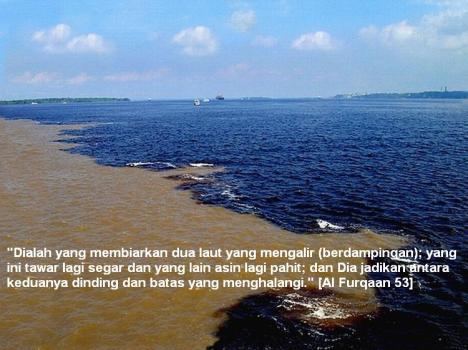 Dua Laut b