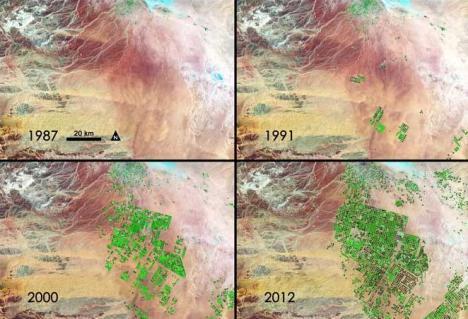 Saudi Hijau NASA